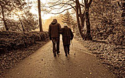 Hoitoapu kotitalousvähennykseen oikeuttavaa henkilökohtaista apua